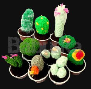 Crochet - Mini cactus